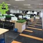 Office carpet cleaning in Ho Chi Minh city